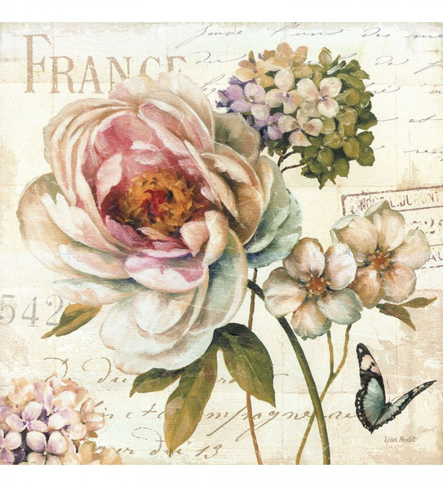 Buy  Wall Decor Canvas 24 x 24 Inch French Greetings Floral Framed Digital Art Print Online