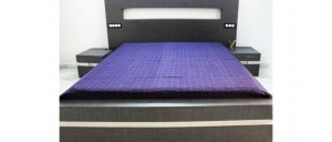 Buy  Purple Double Bed Sheet with Intense Tanka Work Online
