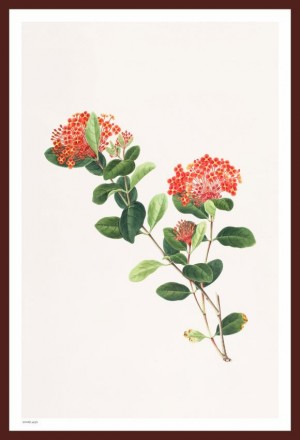 Buy LITTLE RED FLOWERS PAINTING Online