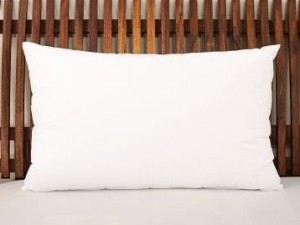 Buy Love For White Pillow Feather Down Longlast  Standard Online