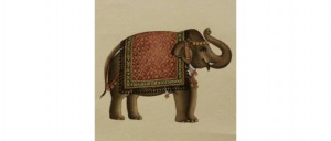 Buy  The Greeting Elephant Online