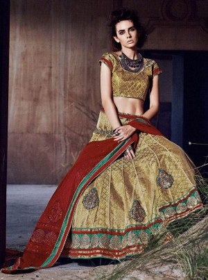 Buy Brown Net Lehenga Choli With Dupatta Online
